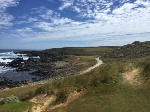 flog-golf-tour-novmerber-2016-ocean-dunes-10th-par-3
